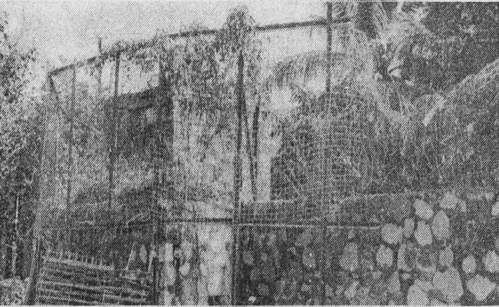 Huyện An Phú trong thời kì chiến tranh Việt Nam